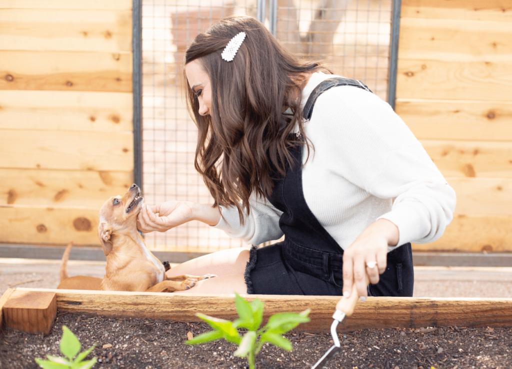 liz illg gardening